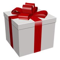 present-150291_960_720 copy